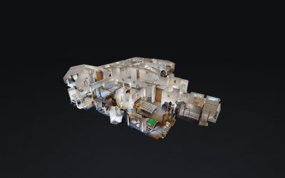 Projects 360 and 3D for Business